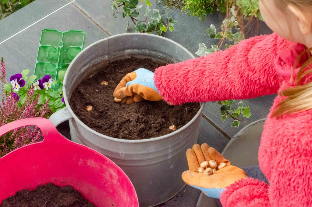 autumn activities for kids outdoors - planting bulbs