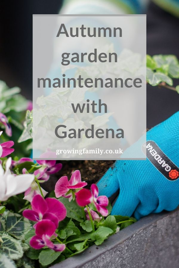 Using leading watering and garden tool brand Gardena tools to tackle autumn lawn care, bulb planting, and container displays.