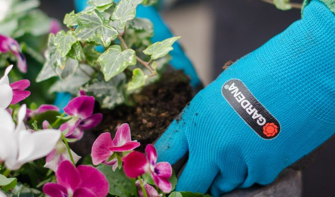 Tackling my autumn garden maintenance with Gardena products | AD