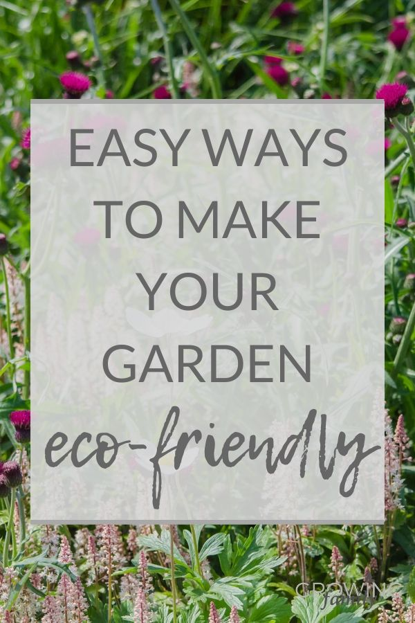 Want to make your garden more eco-friendly? This sustainable gardening guide has lots of easy environmentally friendly gardening tips for greener gardening.