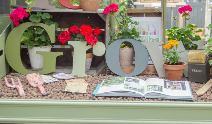 The best tools for planting seeds – and how to improvise with what you've got