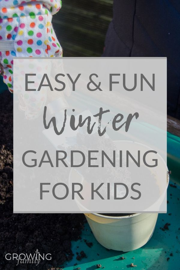 Need ideas for gardening with children in winter? This step-by-step guide covers the best quick and easy growing seeds and how to plant them.