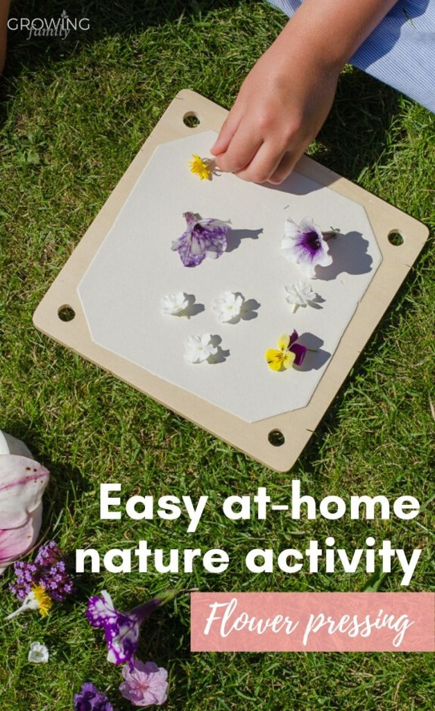 A simple guide to flower pressing - a fun, easy at-home nature activity that can be done at any time of the year. Includes simple step-by-step instructions.