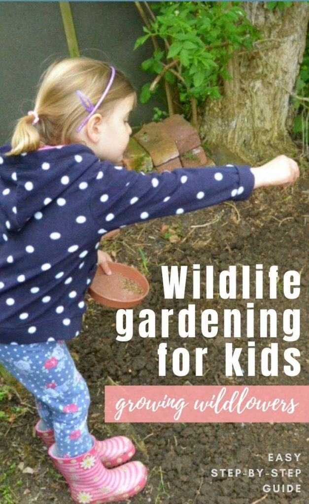 Give nature a home in your garden with this easy step-by-step guide to sowing wildflowers - perfect for a family nature activity and great for keeping the kids busy at home!