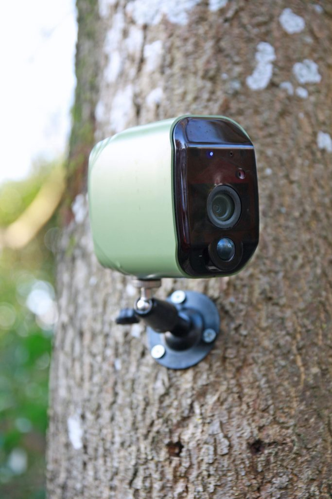 wildlife world wireless wildlife camera