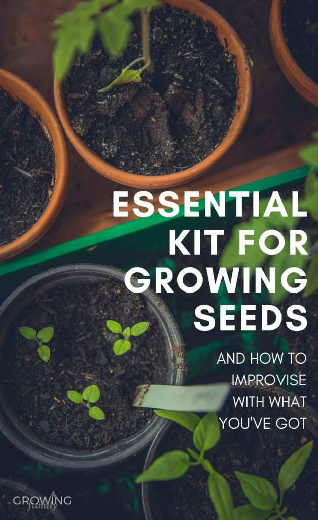 Growing plants from seed? This guide covers the best garden tools for planting seeds, and how to improvise with what you've got if you can't get supplies.