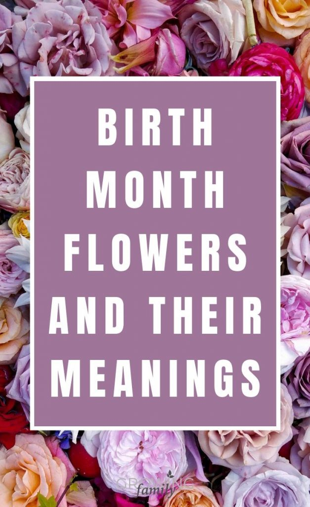 Every month has a birth flower, each with it's own special meaning. This guide lists the birth month flowers and their symbolism for each month of the year.
