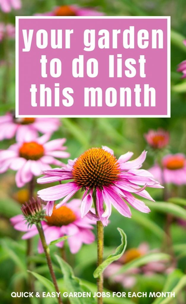Never enough time for gardening? This gardening calendar lists quick and easy gardening jobs by month to help you stay on top of the garden.