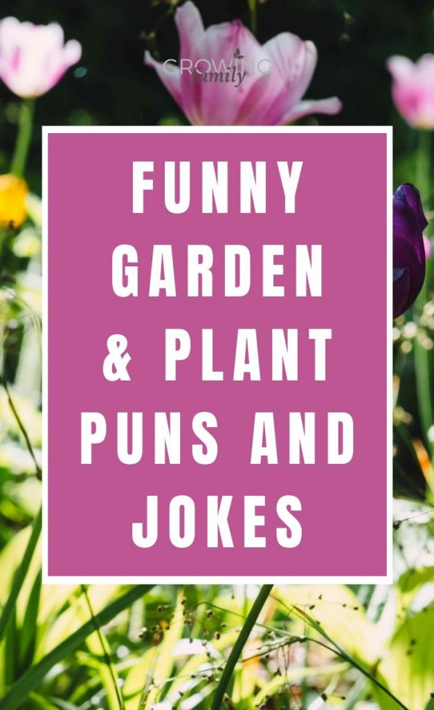 If you're looking for a bit of light-hearted fun with a garden theme, these garden puns and garden jokes will make you smile!