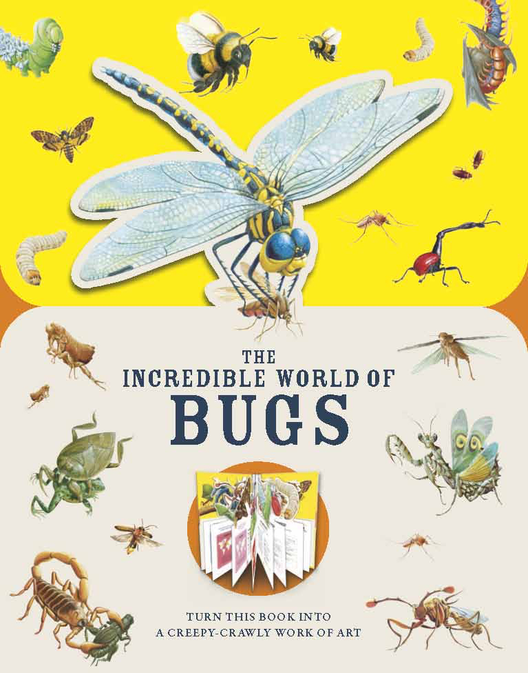 nature books Paperscapes The Incredible World of Bugs