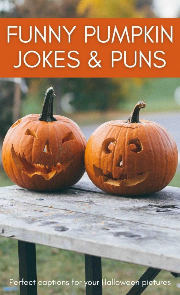 If you're looking for light-hearted halloween fun, these pumpkin jokes and pumpkin puns are devilishly funny!  Includes fun pumpkin facts too.