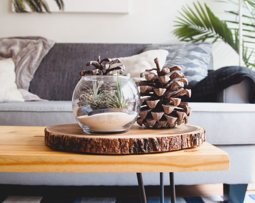 vase and pine cones on coffee table