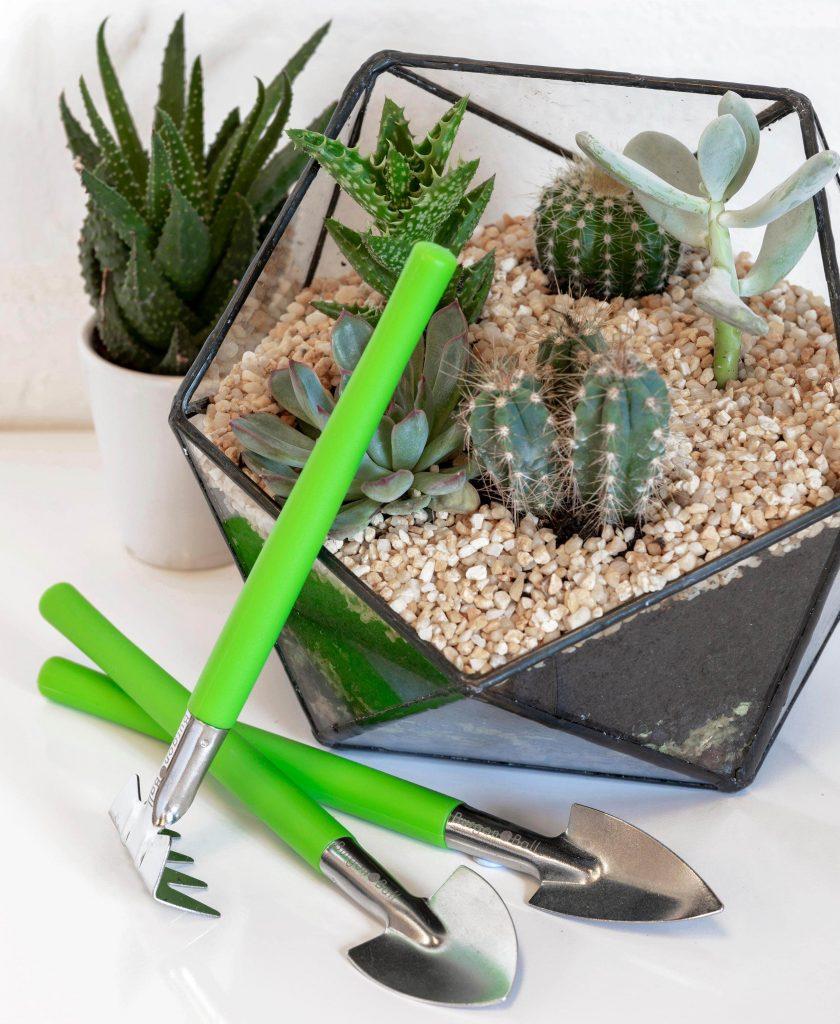 burgon & ball houseplant and terrarium tool set