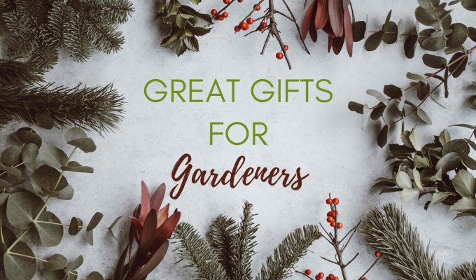 Great gifts for gardeners – including stocking fillers and kids gardening gift ideas