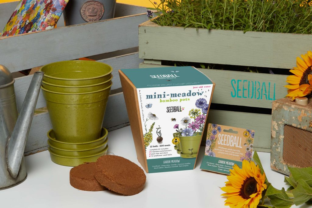 gifts for gardeners - mini meadow bamboo pot from seedball