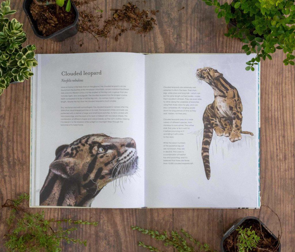 ben rothery hidden planet book