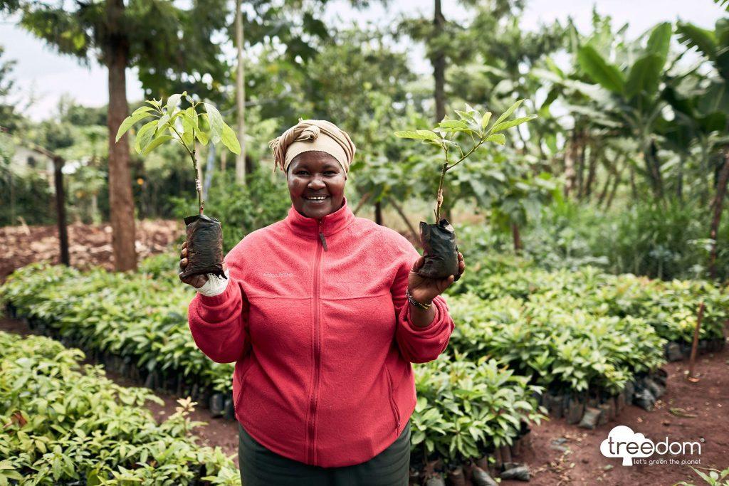 treedom plant a tree scheme