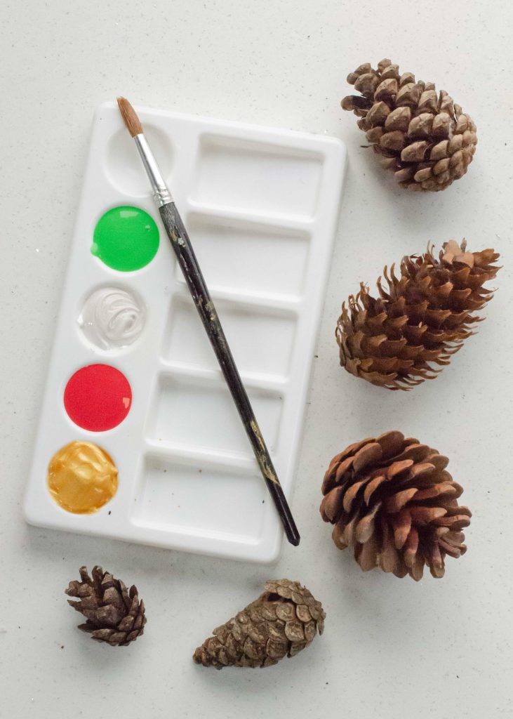 pine cones and poster paint palette