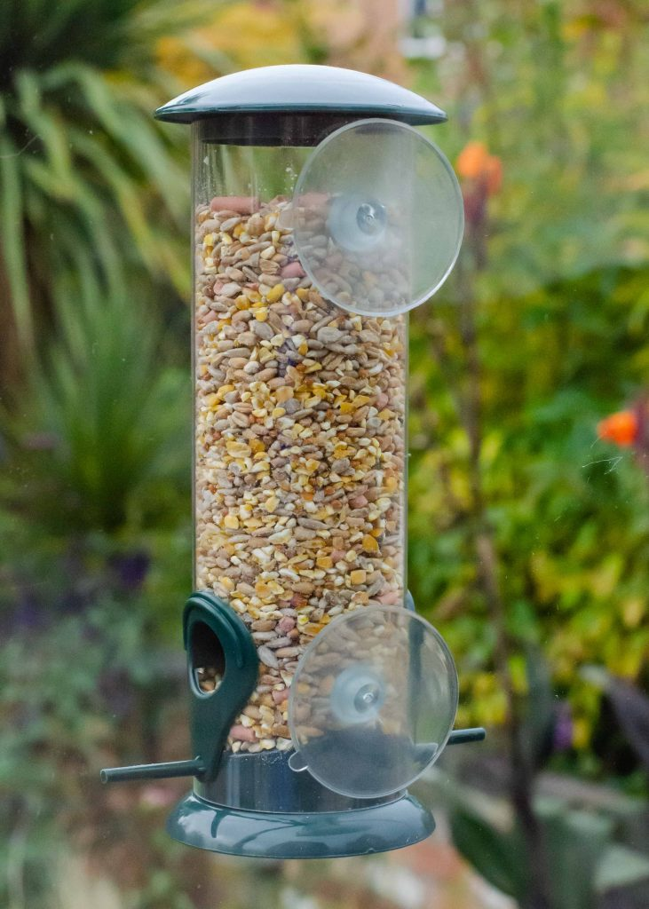 happy beaks suction bird feeder