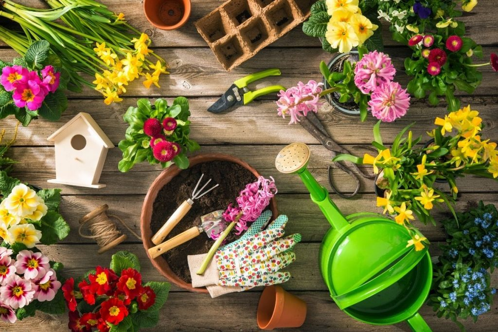 garden tools for beginners