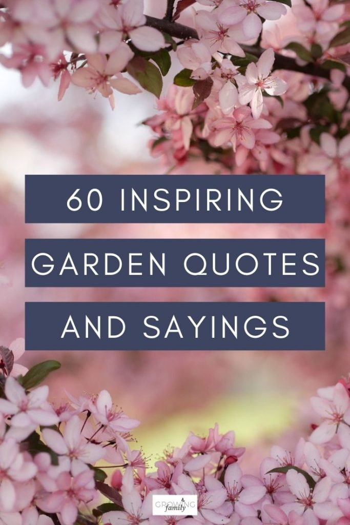 If you'd like some gardening inspiration, these gardening quotes and garden sayings will lift your spirits and put a smile on your face.