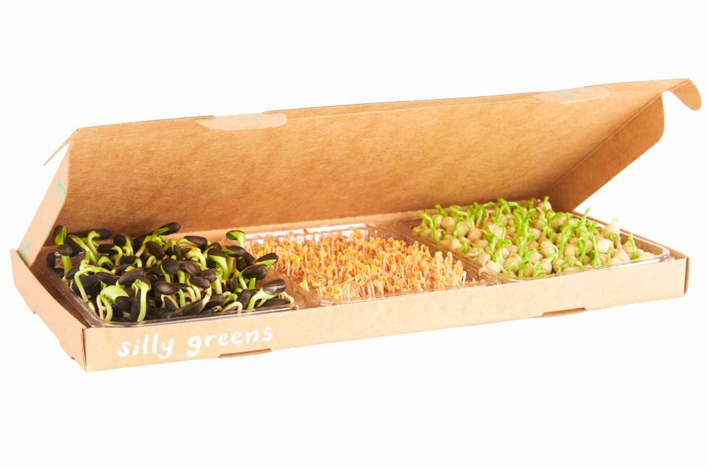 silly greens micro greens by post