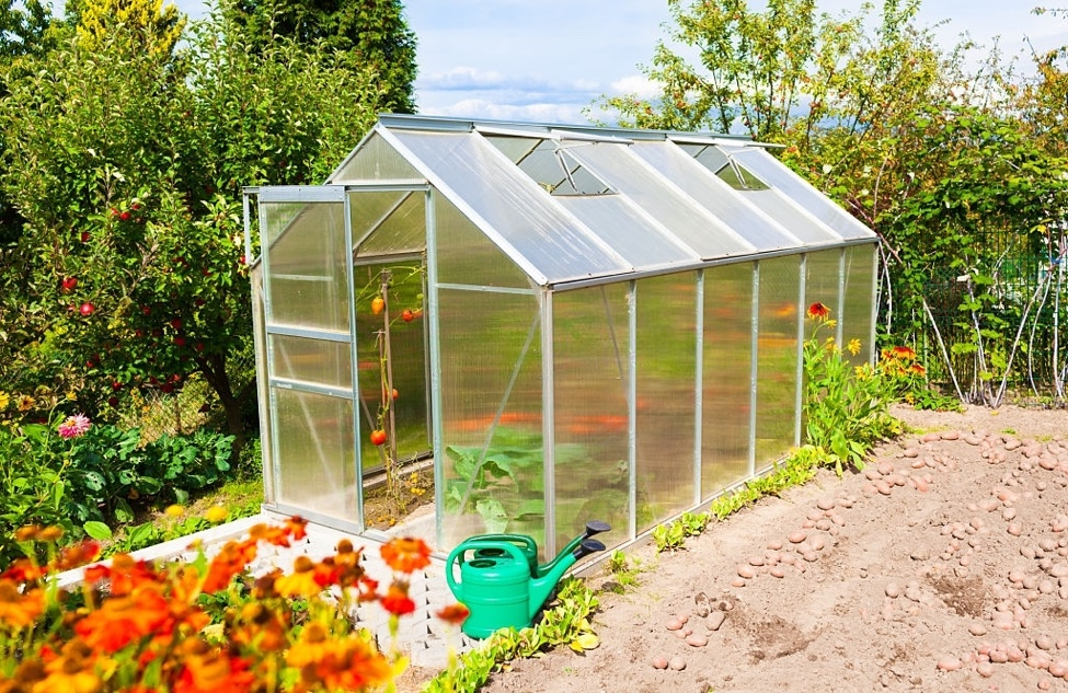 greenhouse with acrylic sheeting