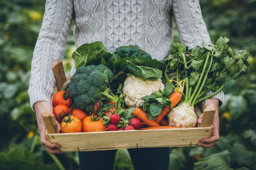 woman holding crate of vegetables