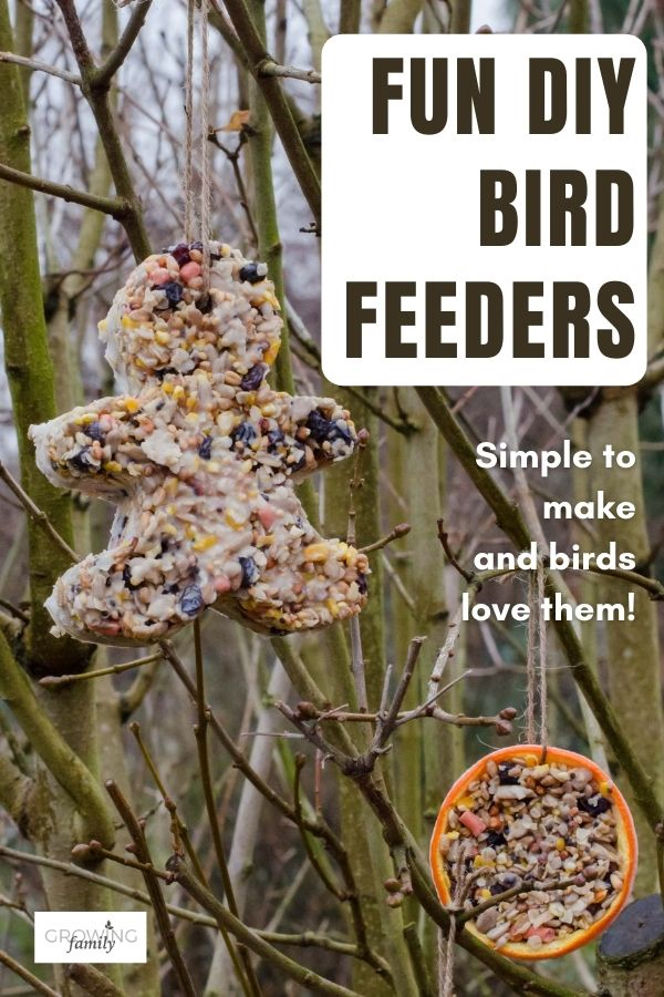 This DIY bird feeder for kids is simple and fun to make, and birds love them! Includes step-by-step instructions and fun extension activities.