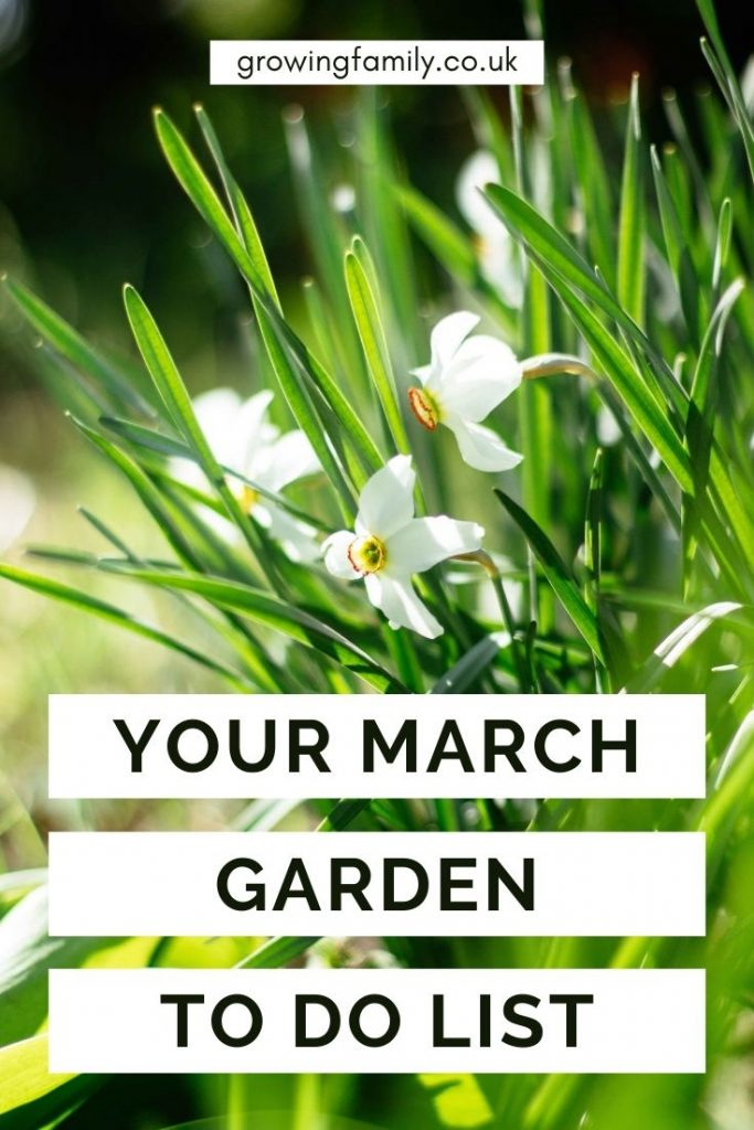 Not sure what to tackle in the garden this month? These quick & easy gardening jobs for March will help you keep the garden looking good.