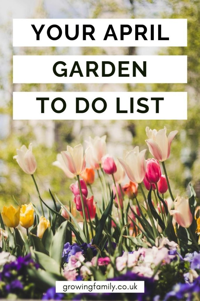 Not sure what to tackle in the garden this month? These quick & easy gardening jobs for April will help you keep the garden looking good.