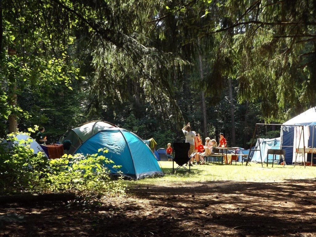 nature adventures - camping in woodland