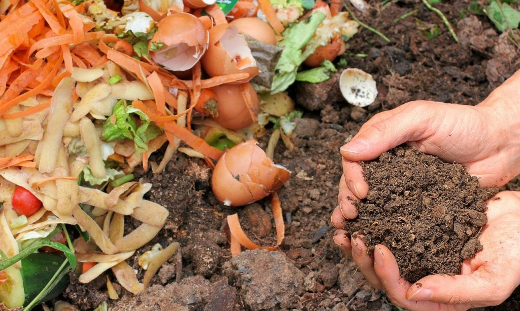sustainable gardening: making compost