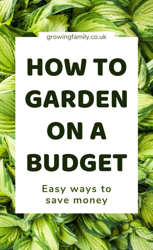 Like the idea of gardening on a budget? These cheap garden ideas will help you save money and still get the garden of your dreams.