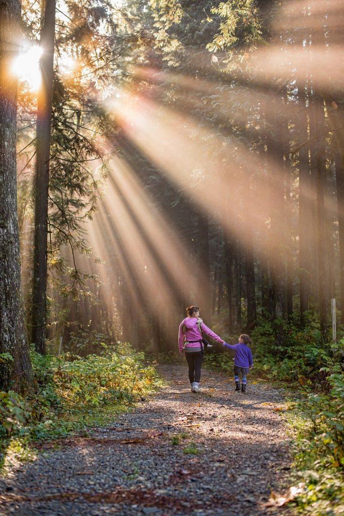 nature adventures - woodland walk