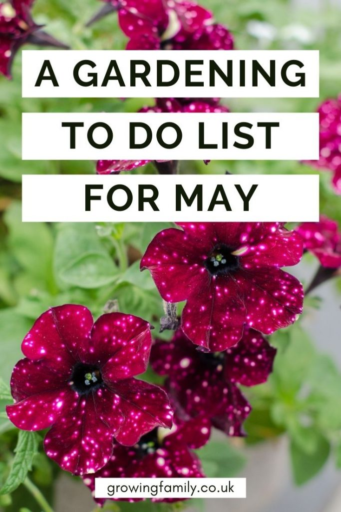 Not sure what to tackle in the garden this month? These quick & easy gardening jobs for May will help you keep the garden looking good.
