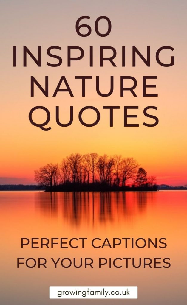Looking for nature quotes or nature captions for photos? This handy resource has 60 captions and quotes about nature to inspire you.