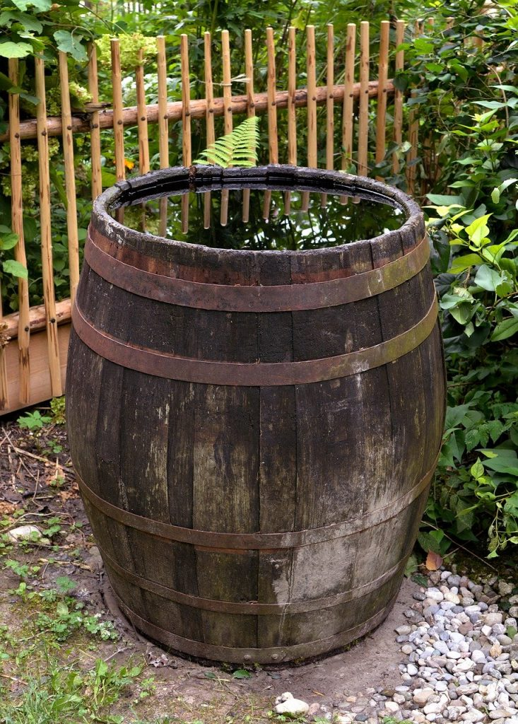 sustainable living - rainwater collection