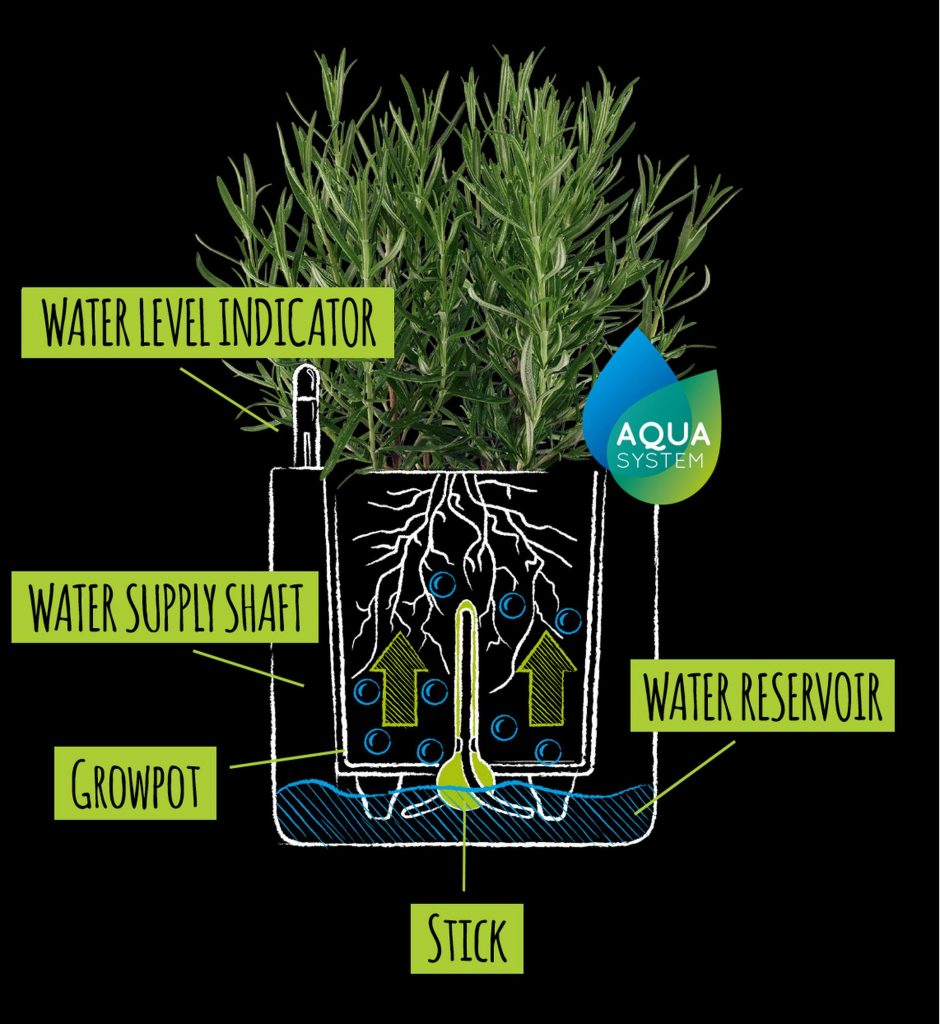 Lechuza self-watering system diagram