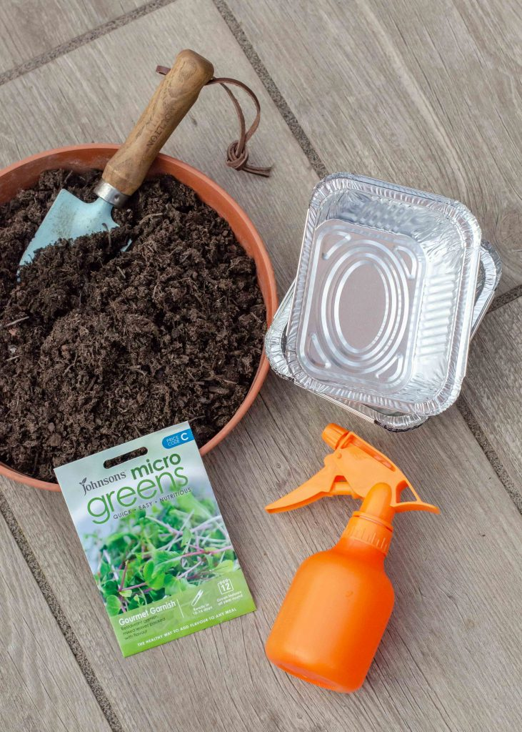 equipment for growing microgreens
