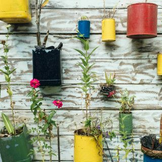 sustainable living - recycled tin can plant pots