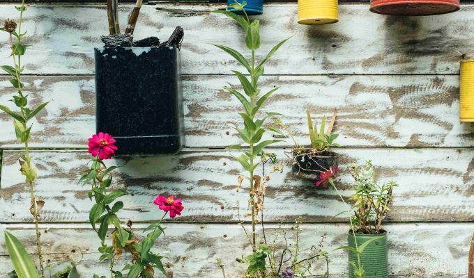 Easy ways to embrace sustainable living