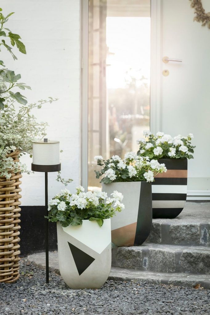 contemporary plant pots with white flowering plants