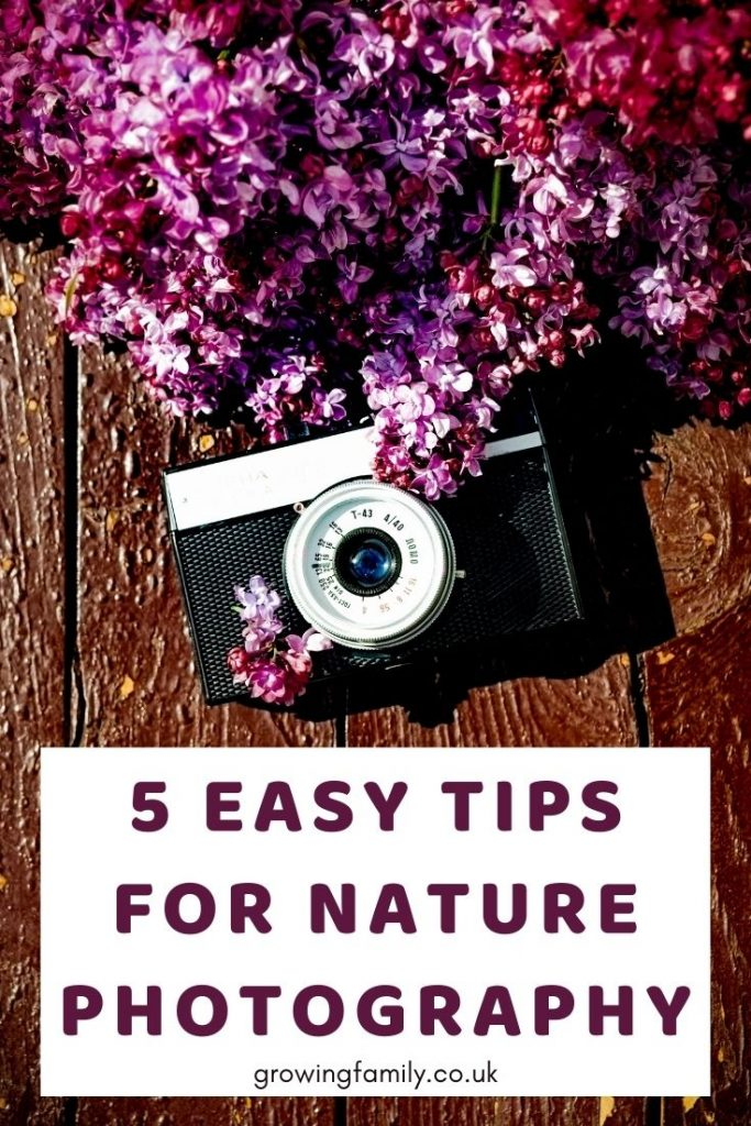 Five simple tips to help you photograph your garden nature and improve your nature photography.