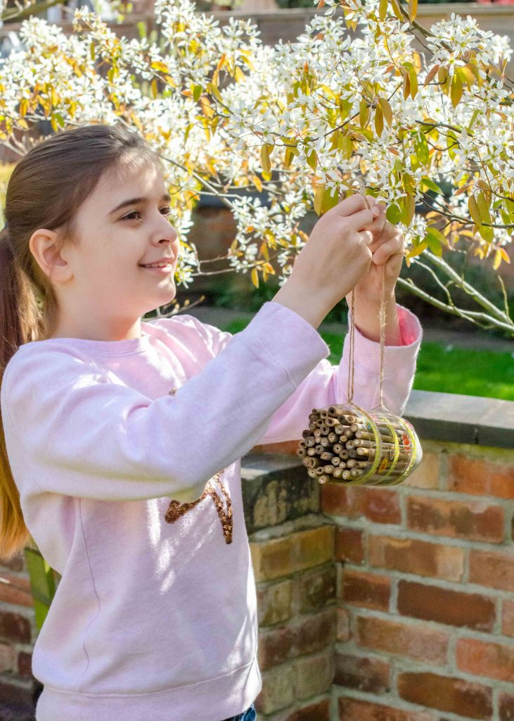 hanging a diy bee hotel in a tree
