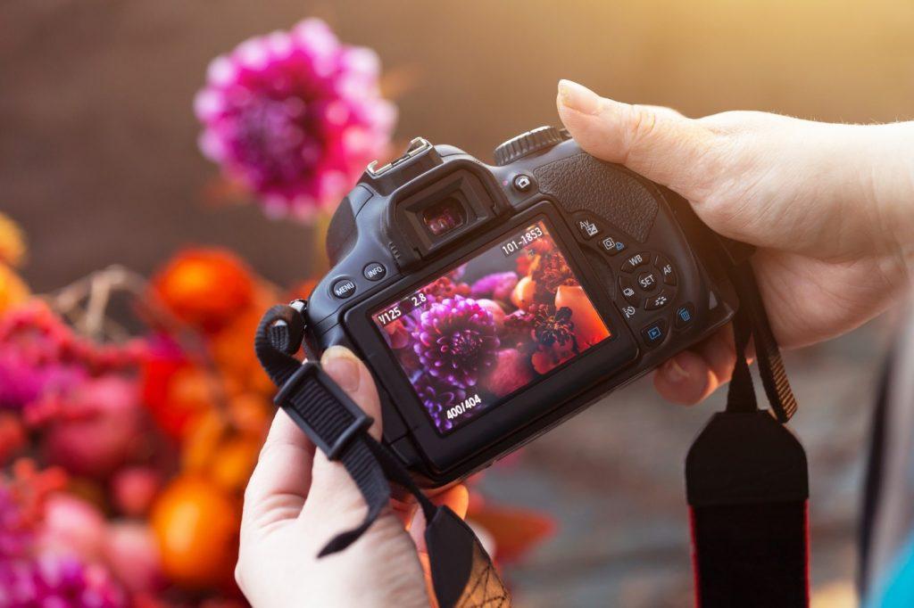 digital camera showing nature photography