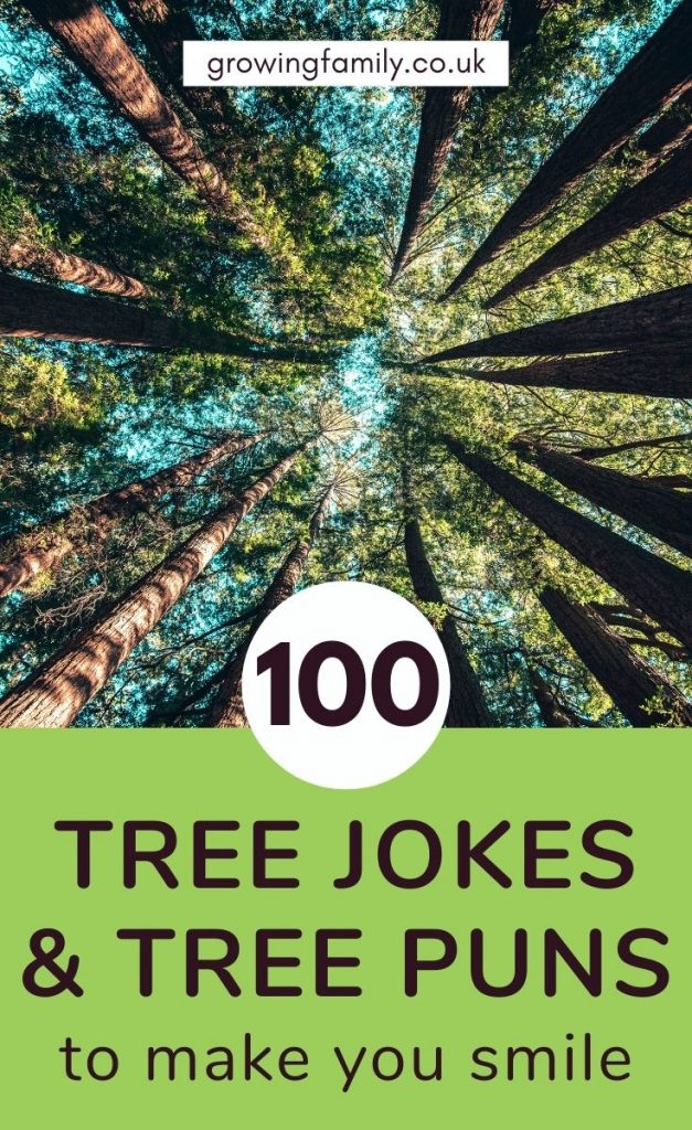 A bumper list of 100 tree puns and tree jokes to make you smile, plus inspiring tree proverbs. Perfect captions for your nature pictures!