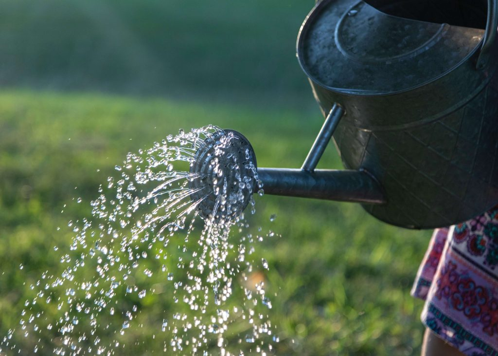 closeup of watering can