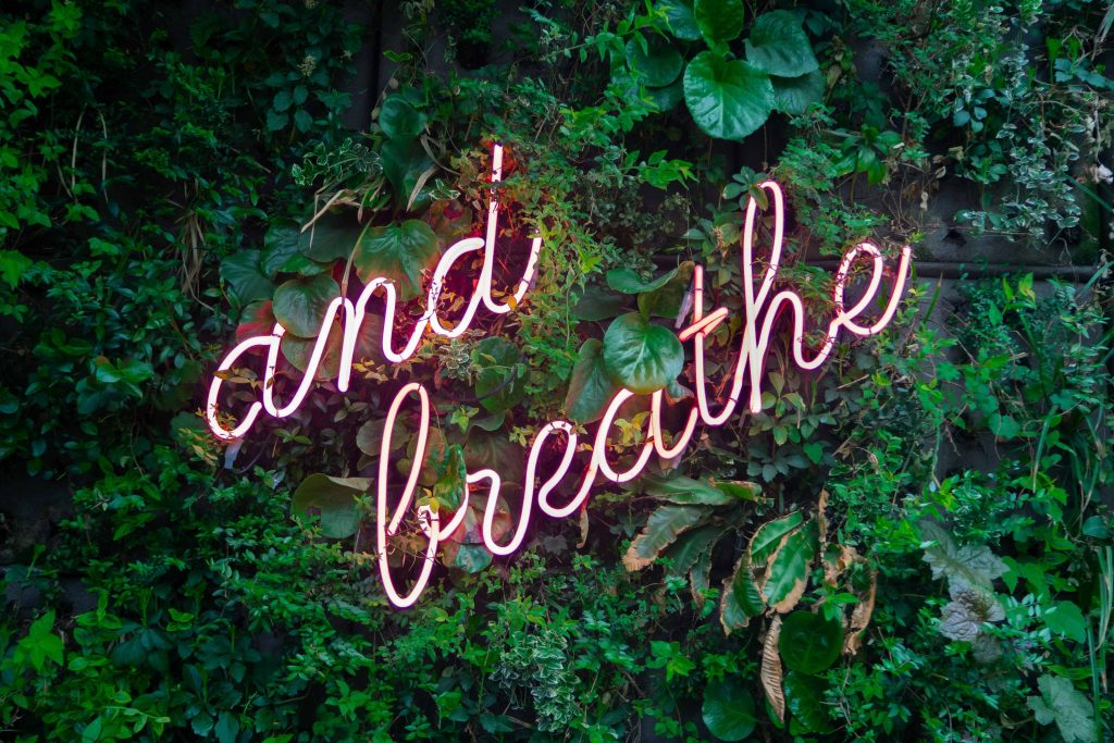 neon sign saying 'and breathe' on a living wall