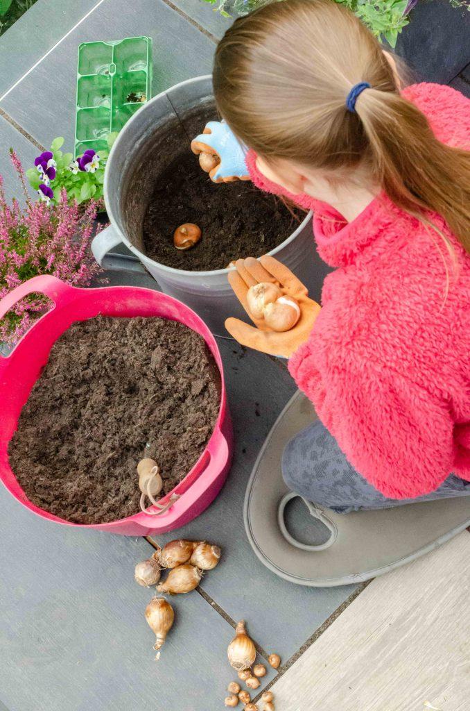 gardening for kids - planting bulbs